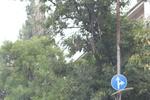 произвеждане на пътни знаци със задължителни предписания по поръчка