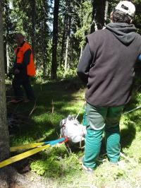 Лебедка за дърводобив и полиестерен колан