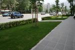 цялостно озеленяване на обществени градини