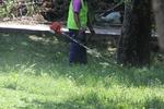 Поддръжка на зелени площи и озеленяване