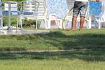 Цялостна поддръжка на зелени площи, градини и паркове