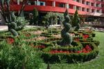 озеленяване на обществени места по поръчка